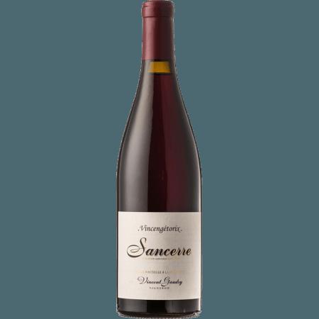 Sancerre Tournebride Domaine Vincent Gaudry 2019 BIO